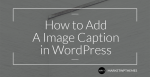 How to Add A Image Caption in WordPress Post