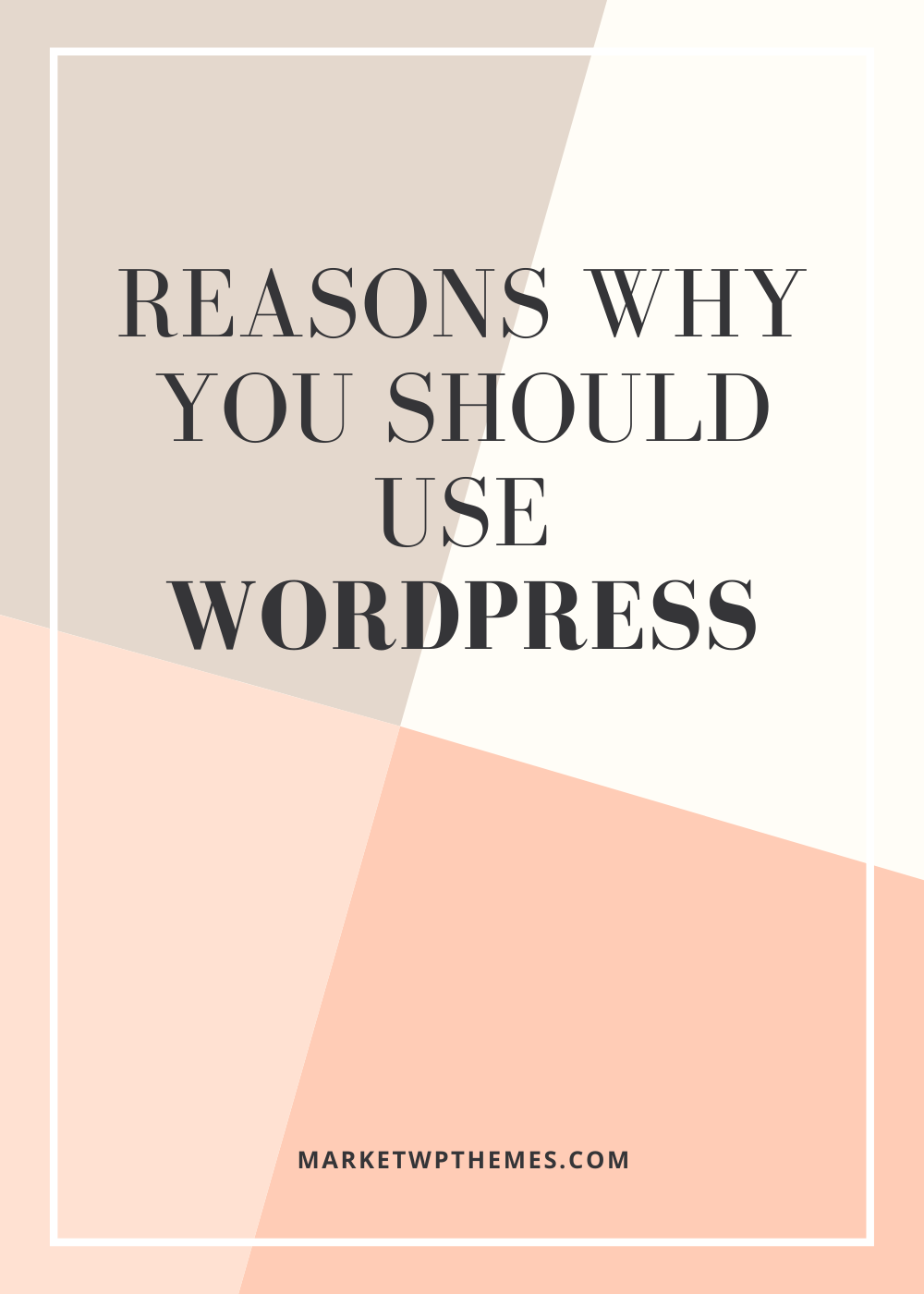 Reasons Why You Should Use WordPress